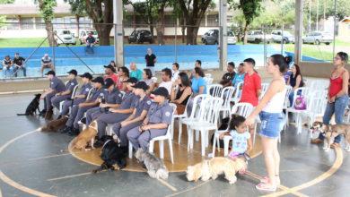 Photo of Prefeitura e Polícia Militar oferecem curso para adestradores mirins