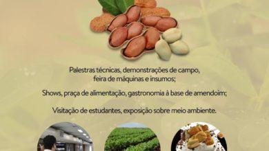Photo of Comissão Organizadora define os últimos detalhes da Feira Nacional do Amendoim