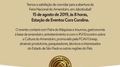 Photo of Feira Nacional do Amendoim começa nesta quinta-feira (15)