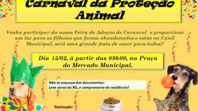 Photo of Departamento Proteção Animal realiza feira de adoção neste sábado (15)